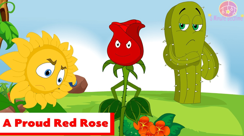 a-proud-red-rose-story