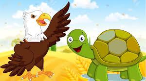 tortoise and the bird