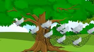 The Bird Trap
