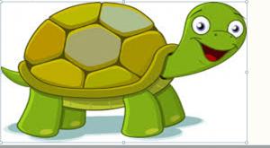 The Tortoise's curse
