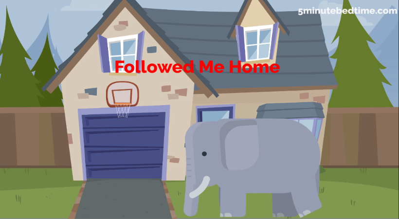 Followed Me Home Story
