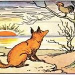 cock and fox