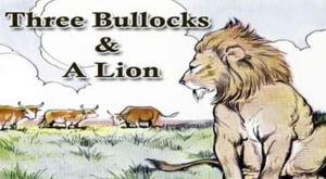 the lion and the bullock