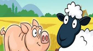 the sheep and the pig