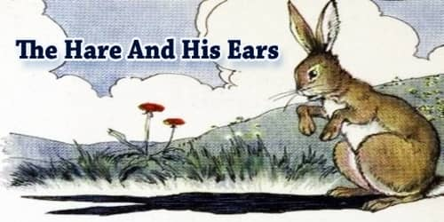 The Hare and his ears