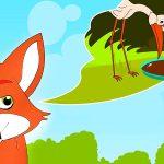 Orange fox thinking of white and brown stork