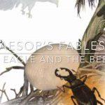 beetle on tree