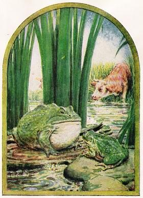 green frog in bushes looking at ox
