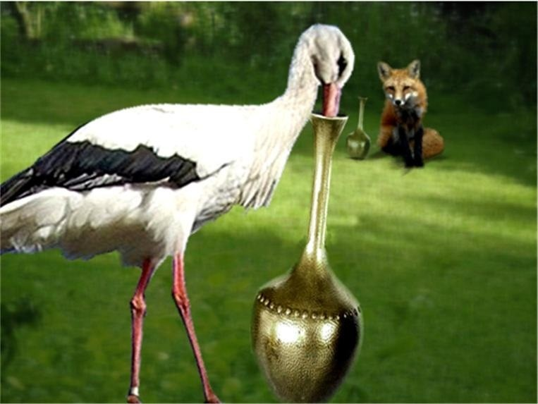 The fox and the stork in jungle