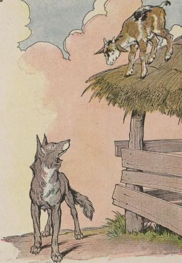 The wolf staring at kid goat