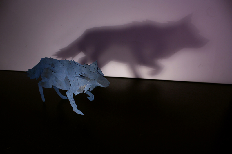 a-wolf-and-his-shadow